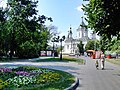 Moscow deviche field.JPG