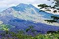 Mount Batur Volcano Bali Indonesia - panoramio.jpg