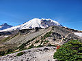 Mount Rainier Summer.jpg