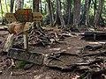 Mt.Kinposan(Kinpohsan) 20130707-P7070091 (9256845080).jpg