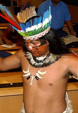 Munduruku - Image: Mundurucu