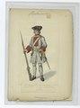 Musketier v. Rgt. Turkheir (?) (NYPL b14896507-90014).tiff