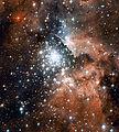 NGC 3603 HST ACS.jpg