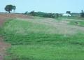 NRCSIL00018 - Illinois (4143)(NRCS Photo Gallery).tif