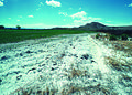 NRCSUT03052 - Utah (6473)(NRCS Photo Gallery).jpg