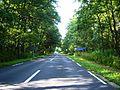 Naglių gamtos rezervatas-kelias KK167.JPG