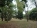 Nairobi Arboretum Park 03.JPG