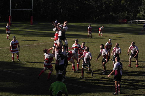Nambour v Noosa line out 1.JPG