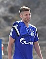 Nastasic Schalke 2015.jpg
