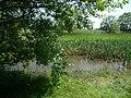 Naturdenkmal Bifurkation (Teilung von Hase und Else) Melle-Gesmold Datei 18.jpg