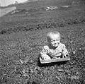 Neške za otroke, Lapajne, Vojsko 1959.jpg