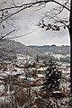 Neige 29 janvier 19 (5) (33132520218).jpg