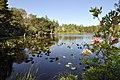 New River Area of Critical Environmental Concern, Oregon (15485580260).jpg
