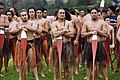 New Zealand - Maori rowing - 8444.jpg