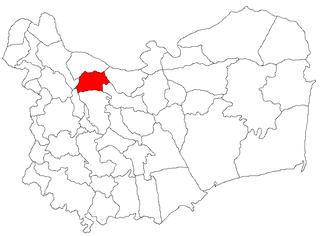 Niculițel Commune in Tulcea, Romania