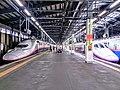 Niigata Station Shinkansen Platform E4kei and E2kei 20180825 152519.jpg