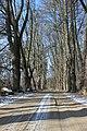 Nový rybník - Cerhonice (001).jpg