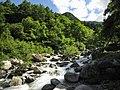 Oguro River.jpg