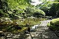 Oigawa river - Koishikawa Korakuen - DSC09285.JPG