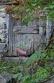 Old door and flowers (16784242764).jpg