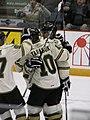 Ontario Hockey League IMG 1067 (4471444418).jpg