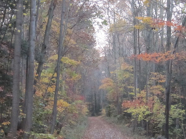 Stony Creek (VA) United States  City new picture : stony valley railroad grade the stony valley railroad grade svrg is a ...