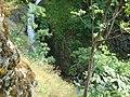 Ovcharchenski Waterfall 025.jpg