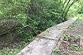Overgrown old platforms (geograph 5380426).jpg