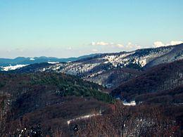Paesaggio della Sila Grande.JPG