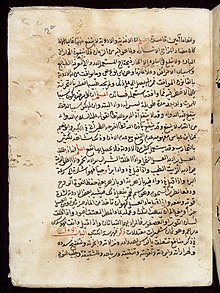 Page from an Arabic Text Wellcome L0033692.jpg