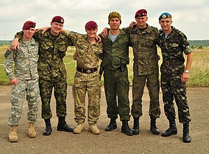 Paratroopers at Rapid Trident 2011.jpg