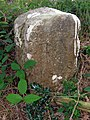Parish boundary marker on Knaves Ash barrow, New Forest - geograph.org.uk - 495679.jpg