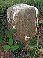 Parish boundary marker on Knaves Ash barrow, New Forest - geograph.org.uk - 495679.jpg