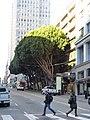 Parking Garage 360 Sutter Street San Francisco.jpg