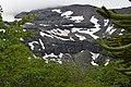 Parque Nacional conguillio (200).jpg