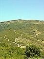 Parque Natural de Montezinho - Portugal (4719044842).jpg