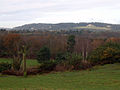Part of the Heath (2078411328).jpg