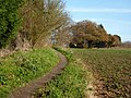 Path towards Hyams Lane and Holbrook - geograph.org.uk - 1602727.jpg