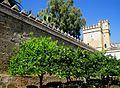 Patio Morisco y Torre del León, Alcázar de los Reyes Cristianos. Córdoba. (2).JPG