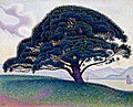 Paul Signac, 1893, The Bonaventure Pine, oil on canvas, 65.7 x 81 cm, Museum of Fine Arts, Houston.jpg
