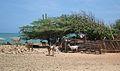 Península de Paraguaná, Falcón.JPG