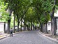 Pere Lachaise avenue ciculaire.jpg