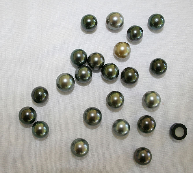 Tahitian pearls, mostly a silvery-gray color though a few are yellow-ish or greenish.