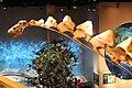 Perot Museum Alamosaurus neck.jpg