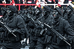Peruvian Army - Peruvian Special Forces marching in 2016.