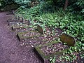 Pet Cemetery, Dunster Castle - geograph.org.uk - 500766.jpg