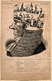 Phrenological head of Baron Lyndhurst containing nine scenes Wellcome V0011367.jpg