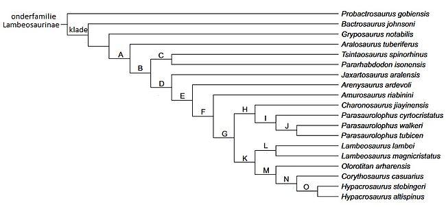 Olorotitan arharensis wikipedia meest parcimone fylogenetische boom van de onderfamilie lambeosaurinae gebaseerd op gegevens van en fylogenetische analyses door evans en reisz 2007 ccuart Images
