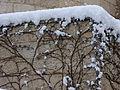 PikiWiki Israel 29206 Snow in Jerusalem.JPG