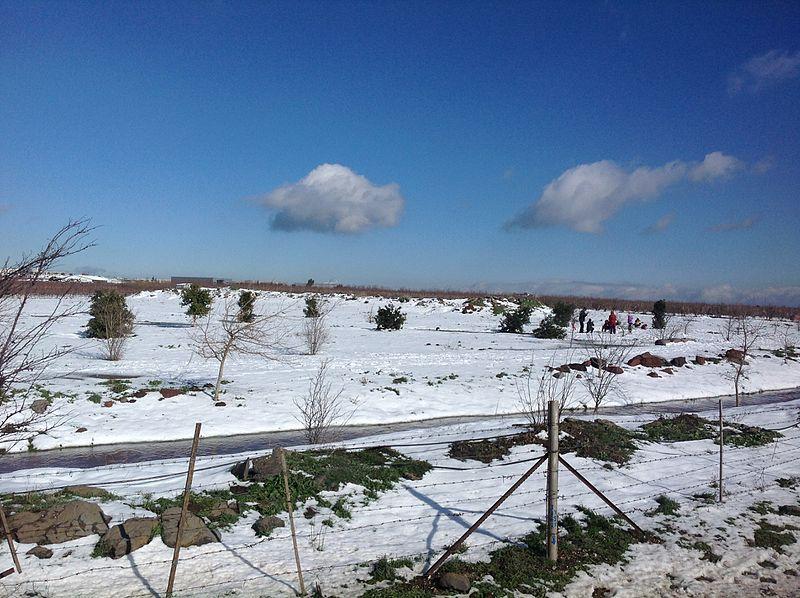 שלג בחורף